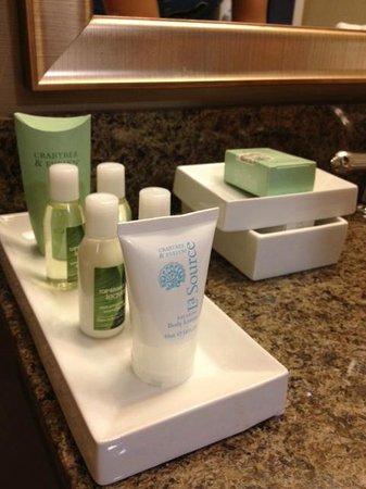 Bushkill Inn & Conference Center : Bath room