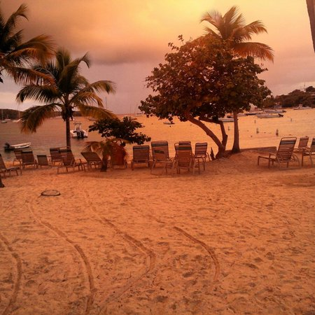Caribbean Fish Market: View from the restaurant!!