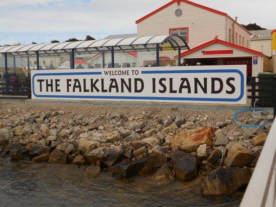 Sea Lion Island, Falklandinseln: benvenuti