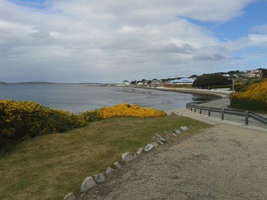 Sea Lion Island, Falklandy: lungomare