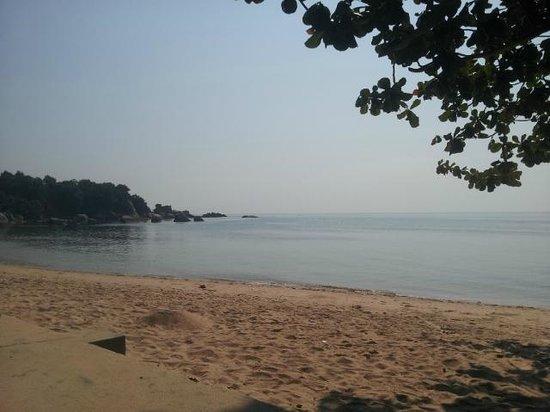 Mercure Koh Samui Beach Resort : Beach