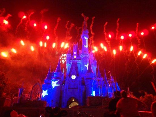 Happily Ever After Fireworks: Final FIreworks - Magic Kingdom