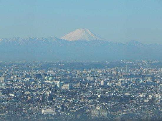 Tokyo Metropolitan Government Buildings: Fuji
