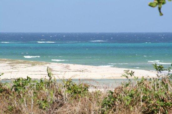 Shambani Cottages: Spiaggia Diani