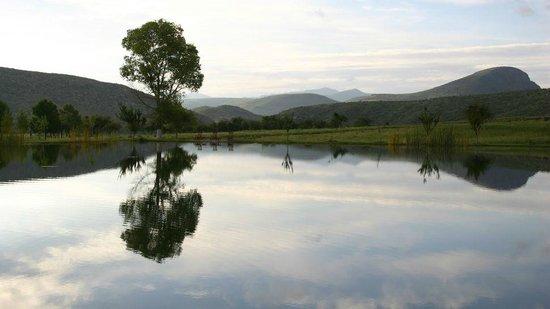Cibolo Creek Ranch: Grounds