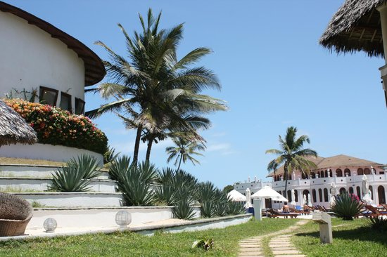 Garoda Resort : cielo azzurro con palma