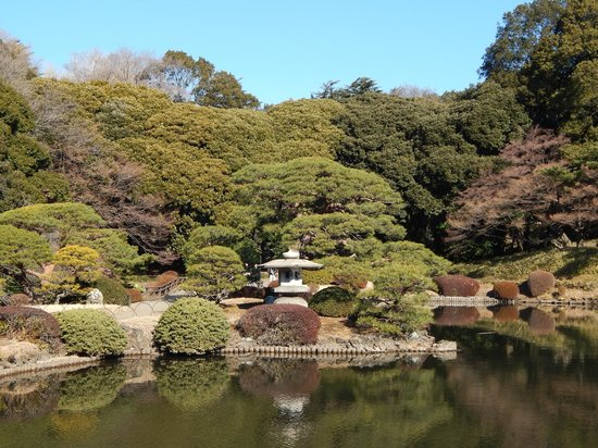 Shinjuku Gyoen National Garden : Garden