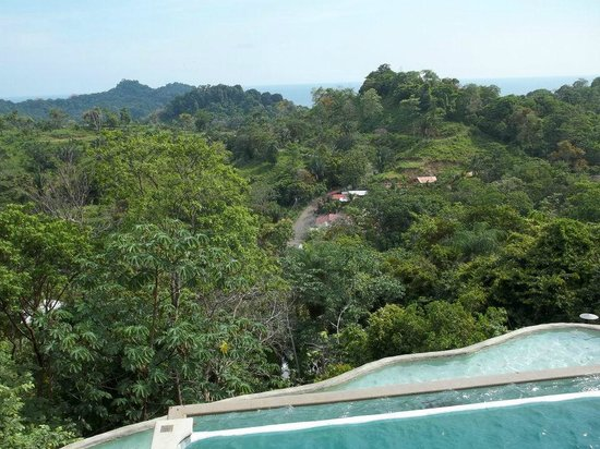 Gaia Hotel & Reserve: Pool