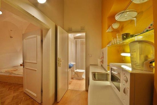 At the Golden Horseshoe - U Zlate Podkovy: Kitchen in apartment