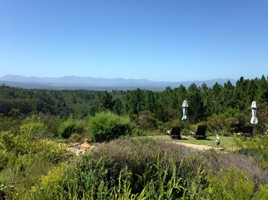 Fynbos Ridge Country House & Cottages : View from the Pool