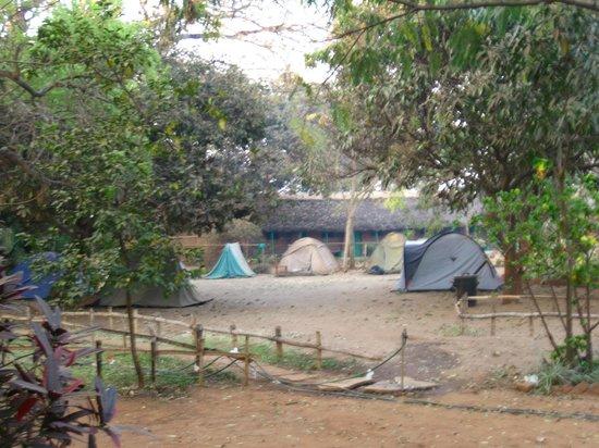 Mabuya Camp: Tent area