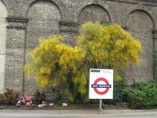 Ibis London Earls Court: Ближайшая станция метро West Brompton
