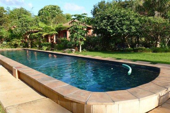 Ambience Inn: Pool