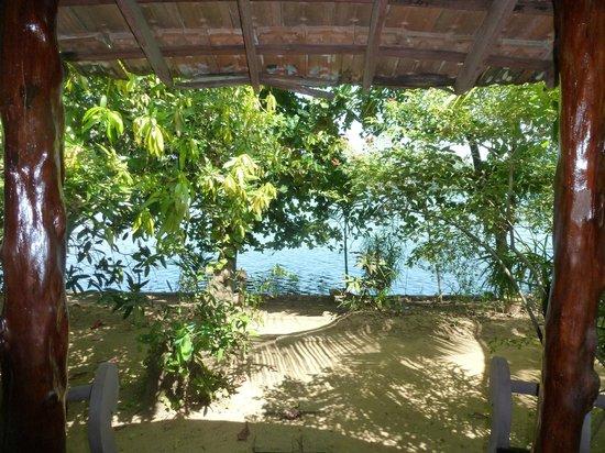 Big Banana Island Retreat: vue de la chambre