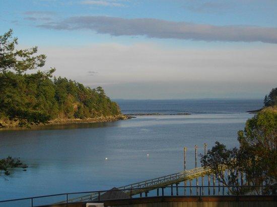 Mayne Island Resort: Bennet Bay dock
