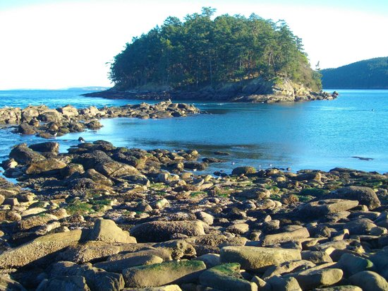 Mayne Island Resort : Rocky point in Bennet Bay National Park