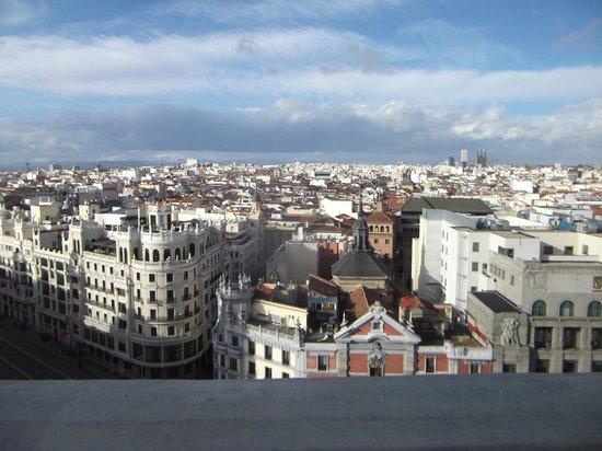 Círculo de Bellas Artes: terrazza5
