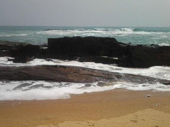 Coconut Grove Beach Resort : ocean