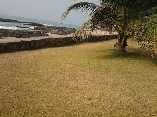 Coconut Grove Beach Resort : view