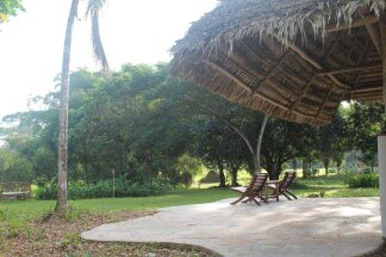 Kiskadee Lodge : Main lodge verandah