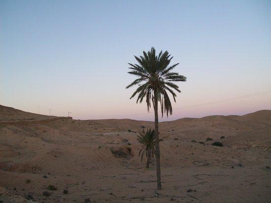 Hotel Marhala: verso Tamarzet - il vero villaggio berbero