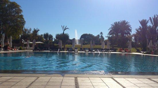 Pullman Marrakech Palmeraie Resort and Spa: Zwembad