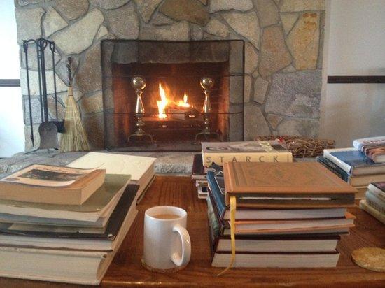 Fire Mountain Inn : Library