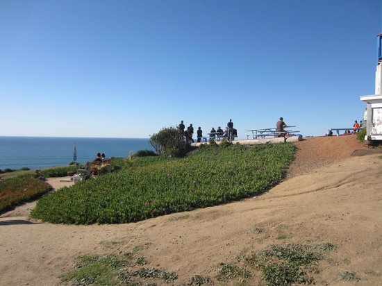 Torrey Pines Gliderport : The Gliderport