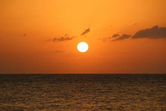 Sunset at the Palms: Sunset in Negril