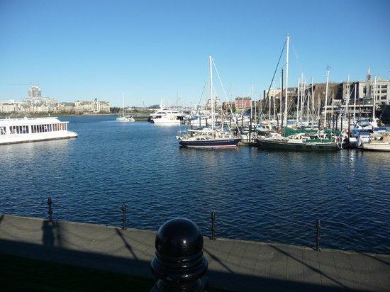 Inner Harbour: Beautiful!