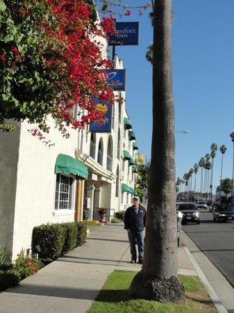 Comfort Inn Santa Monica: Comfort Inn on Santa Monica Blvd.
