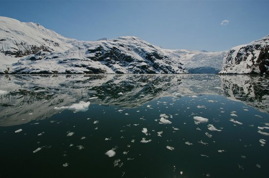 26 Glacier Cruise by Phillips Cruises and Tours : Entering Blackstone Bay in Prince William Sound - Photo: Bill R.