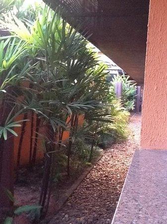 Baoba Hotel: vista quarto terreo ao lado piscina