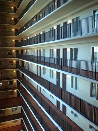 Embassy Suites by Hilton Tampa - Downtown Convention Center: View of the rooms