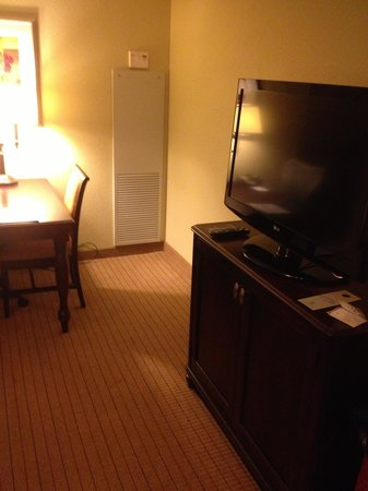 Embassy Suites by Hilton Tampa - Downtown Convention Center: Living Room TV