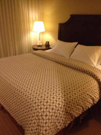 Embassy Suites by Hilton Tampa - Downtown Convention Center: Comfortable Bed