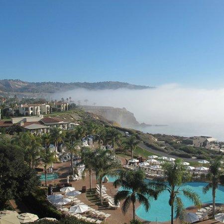 Terranea Resort: Morning view