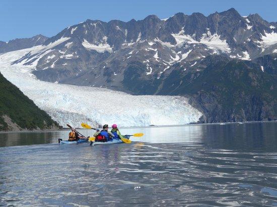 Liquid Adventures : Kayaking to Aialik Glacier