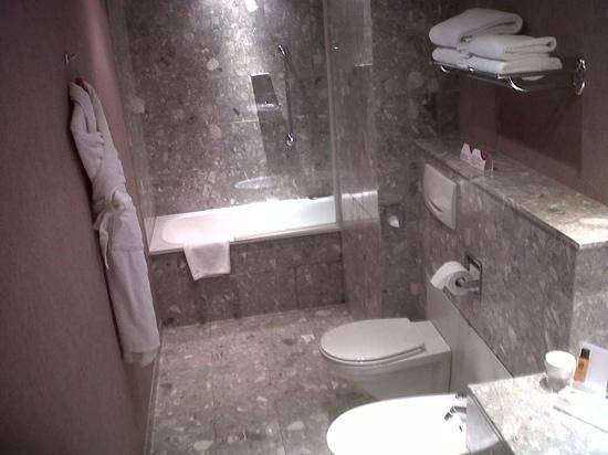 Crowne Plaza Toulouse : bathroom