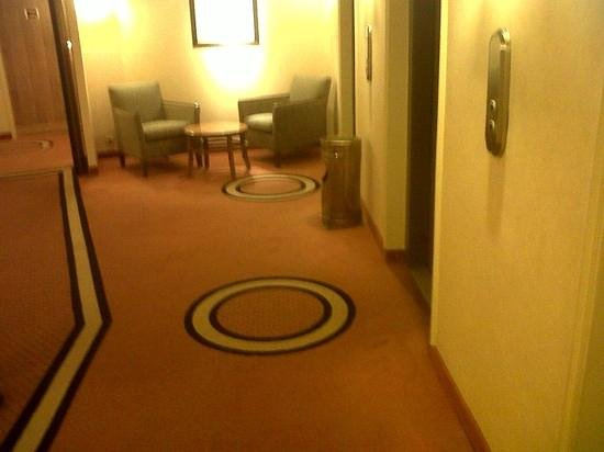 Crowne Plaza Toulouse : floor hall