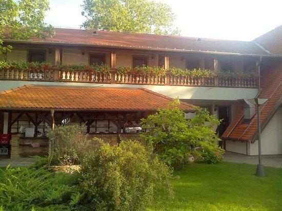 Dunav Restaurant : Donau Hotel