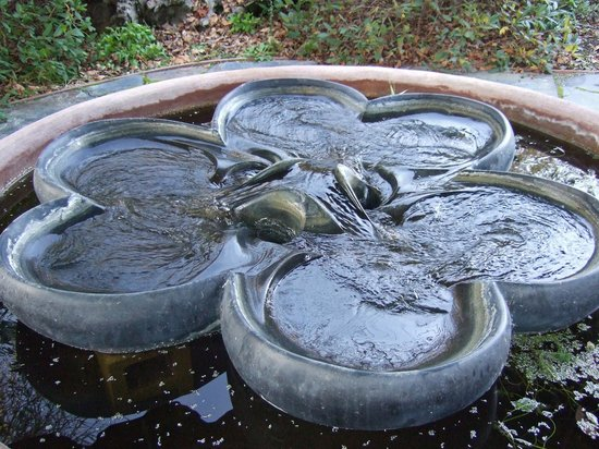 Flow form fountain - outdoor massage waiting area. - Picture of ...