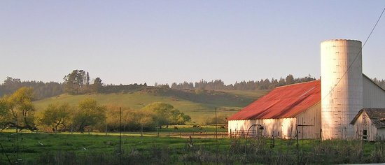 Osmosis Day Spa Sanctuary: Our tranquil rural location is just 60 miles north of San Francisco.