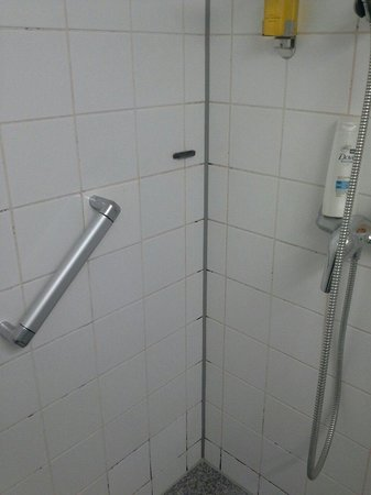 InterCityHotel Frankfurt: Moldy shower!!!