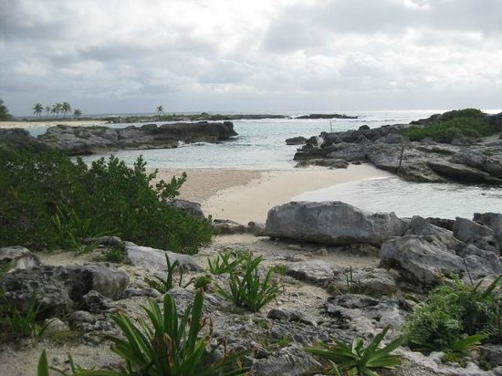 Grand Sirenis Riviera Maya Resort & Spa: pretty beach but rocky