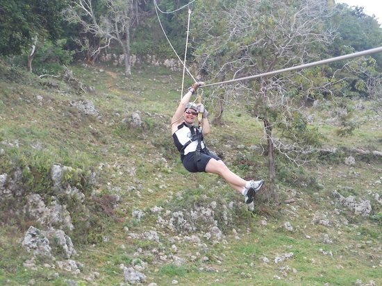 Zip Line at Monkey Jungle: one of the ziplines