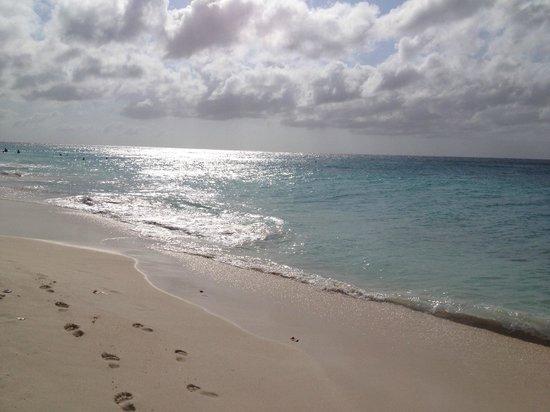 Bucuti & Tara Beach Resort Aruba: Crystal clear water