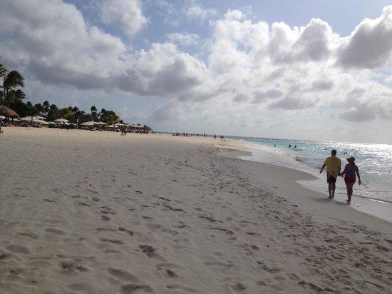 Bucuti & Tara Beach Resort Aruba: Huge beautiful beach