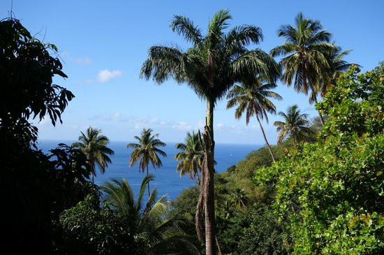 La Haut Resort: On the walk to our room