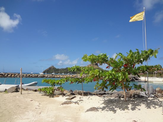 The Landings St. Lucia : Seriously...Can it be this Beautiful